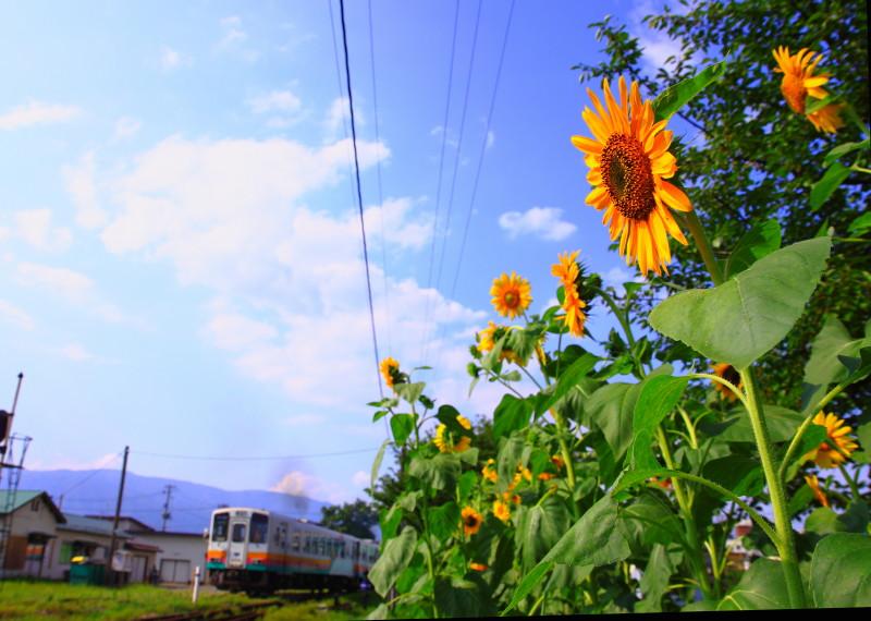 20110815_219-9.jpg